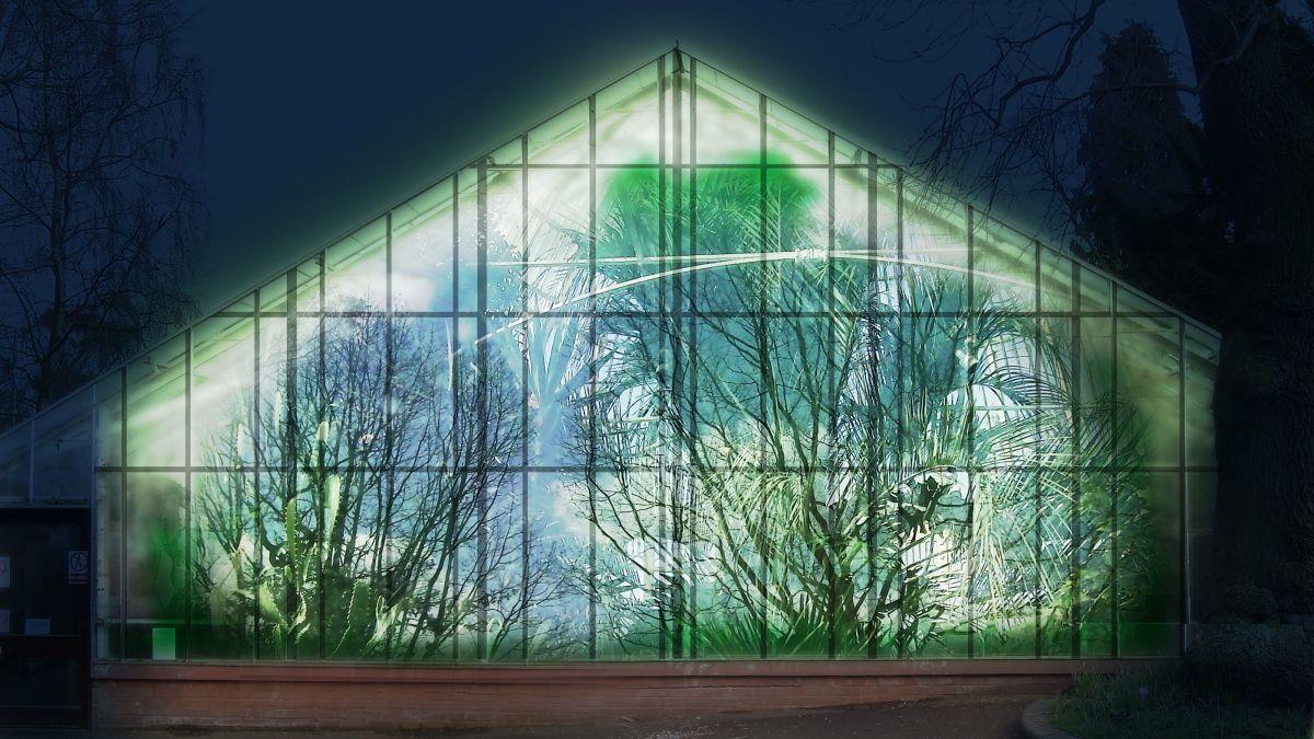 Laurie sumiye greenhouse